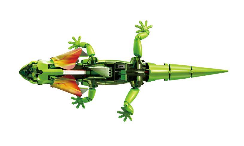 Frilled Lizard Robot Kit Top