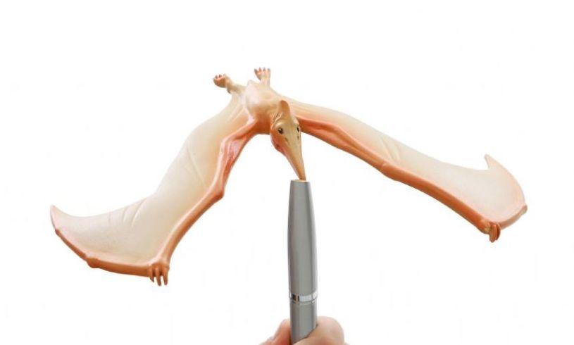 Lifestyle Amazing Balancing Pteranodon