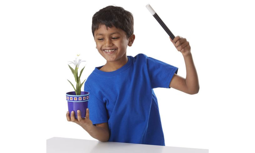 Magic Flower Pot