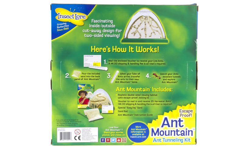 Ant Mountain Back