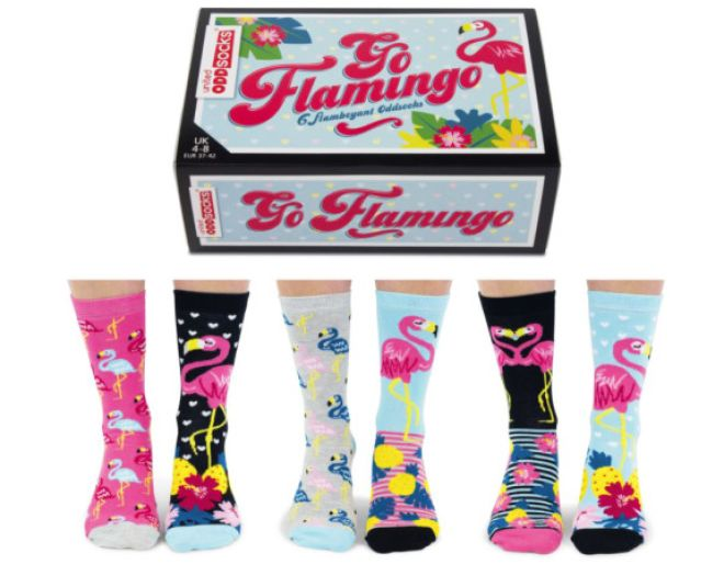 Go Flamingo