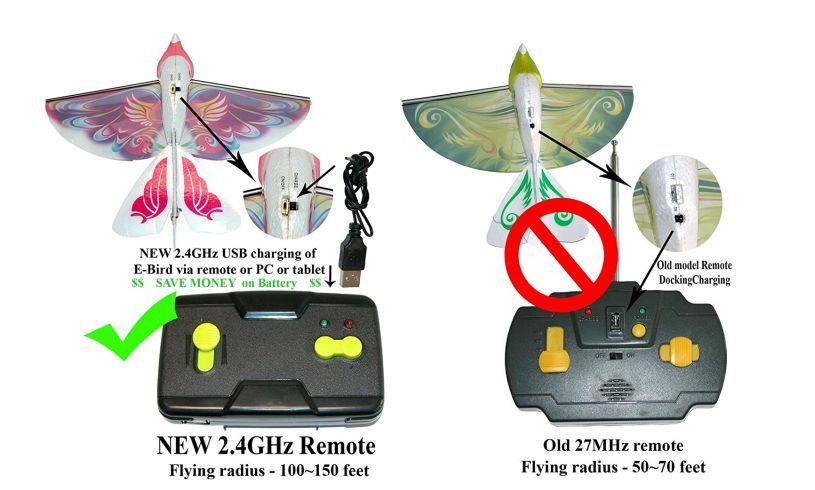 New unorived remote and bird