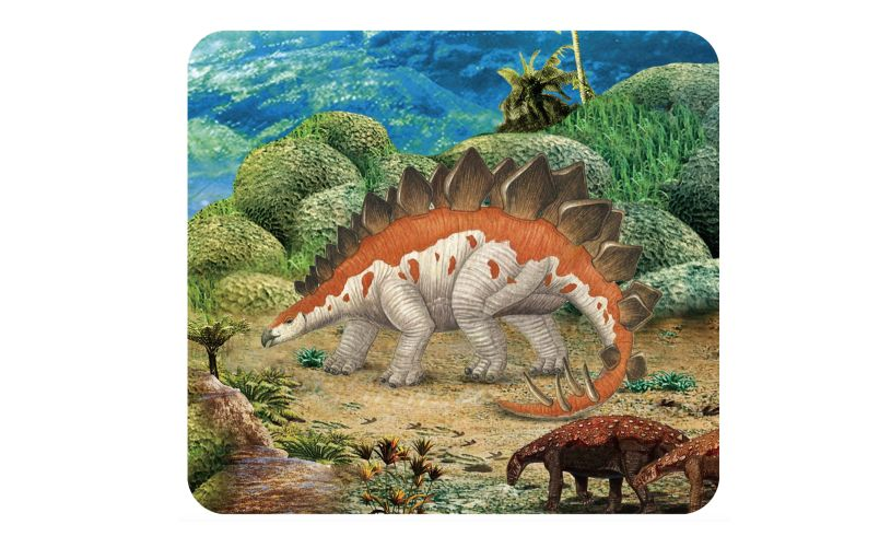 slide of stegasaurus