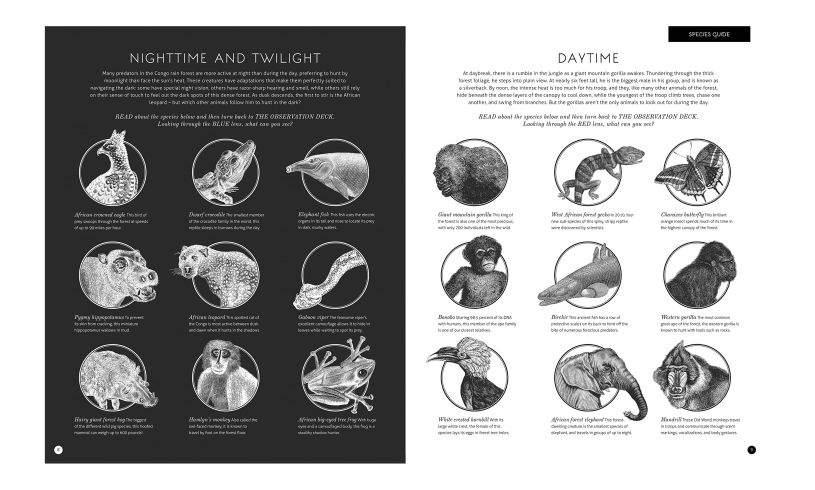 Illuminature - Nature Book with Magic Lens Page Detail