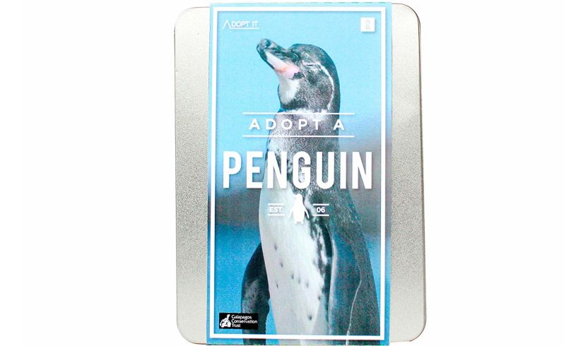 'Adopt-a-Penguin - A Real One'