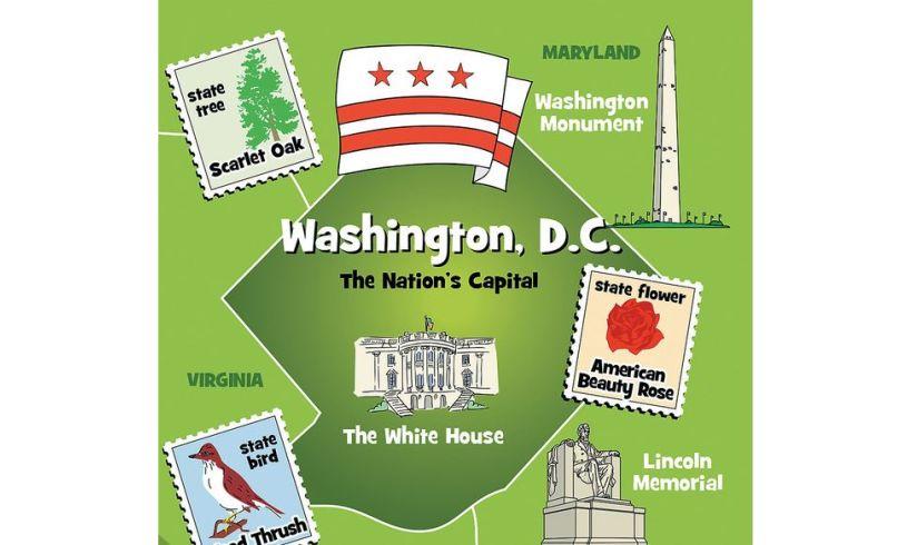 All Around the USA - Brainbox Detail