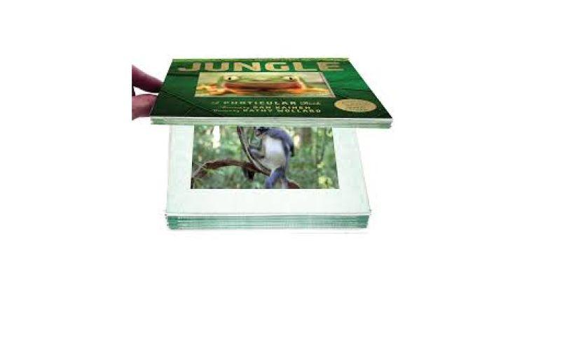 Jungle Photicular Book detail