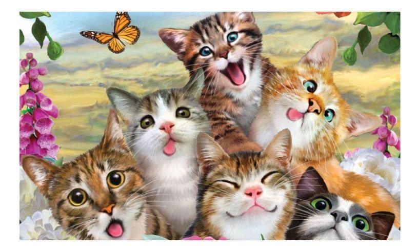 Cat 3D Selfie puzzle