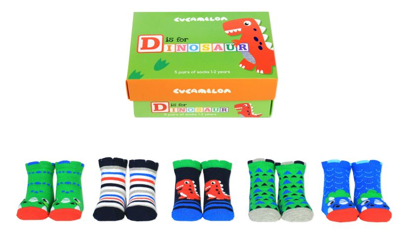 D is for Dinosaur Socks Whole