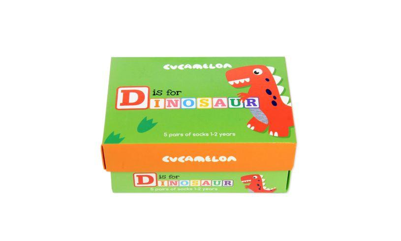 D is for Dinosaur Socks Box