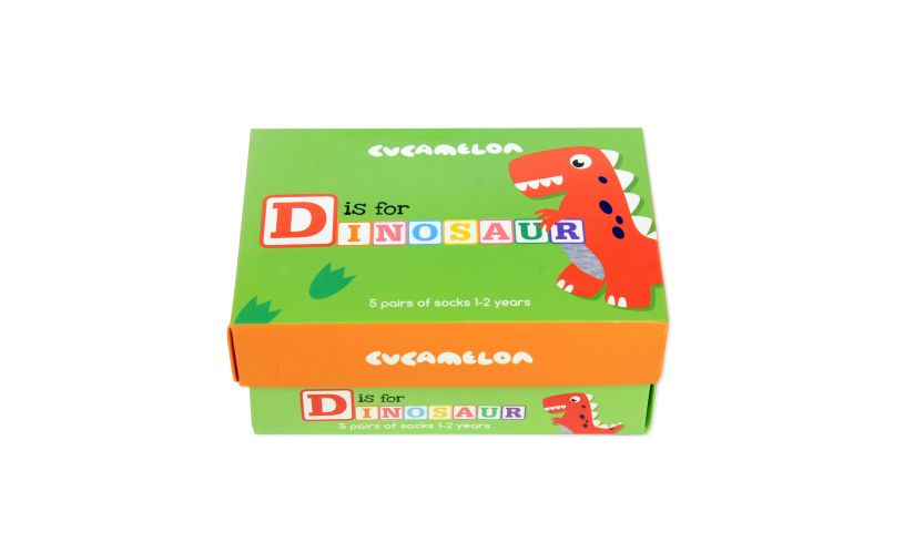 D is for Dinosaur Socks Box