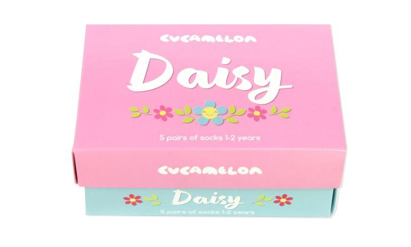 Daisy Socks Box