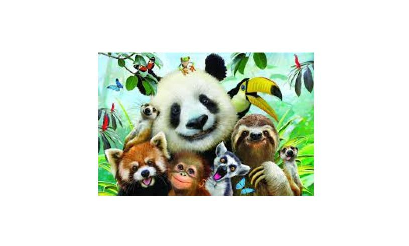 Zoo Selfie puzzle with 3D effect