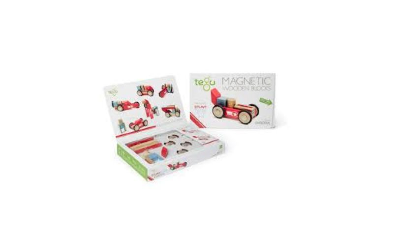 Tegu 12 piece stunt team magnetic blocks kit