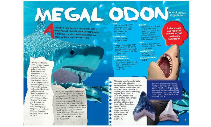 Shark fact book page sample