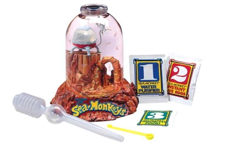 Sea Monkeys Box