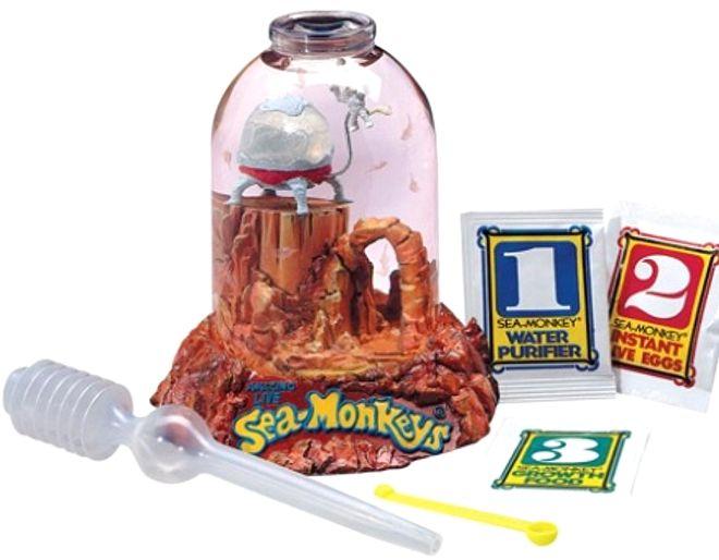 Sea Monkeys Box