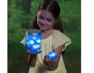 Chasing Fireflies shine and seek box