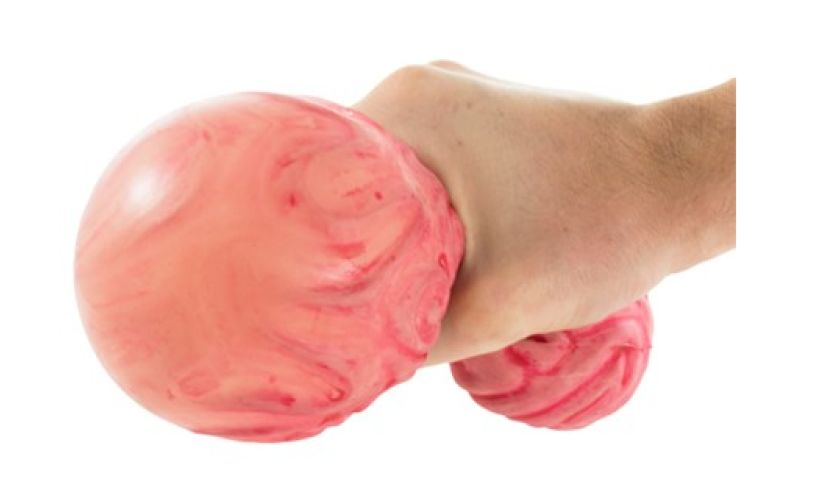 Playvisions brainbuster ball stress ball