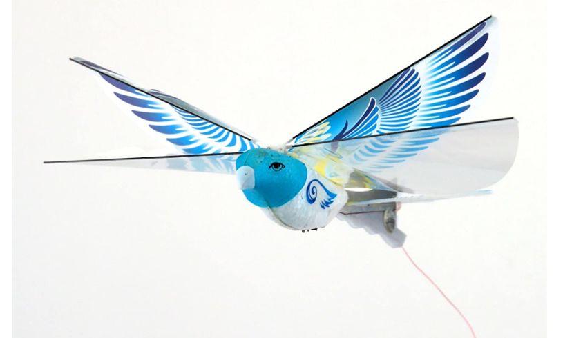 Parrot E-Bird remote control flight