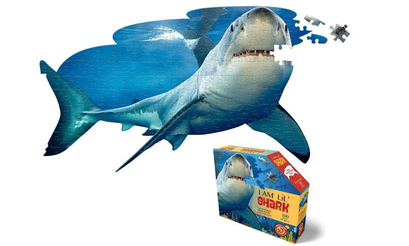 I Am Lil' Shark Detail