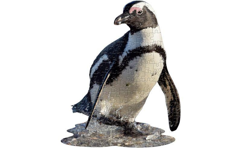 I Am Lil' Penguin