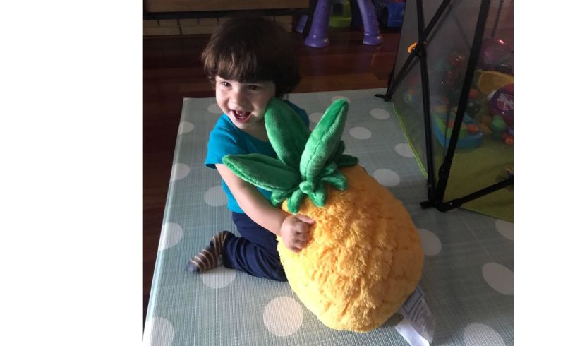 Pineapple squishable