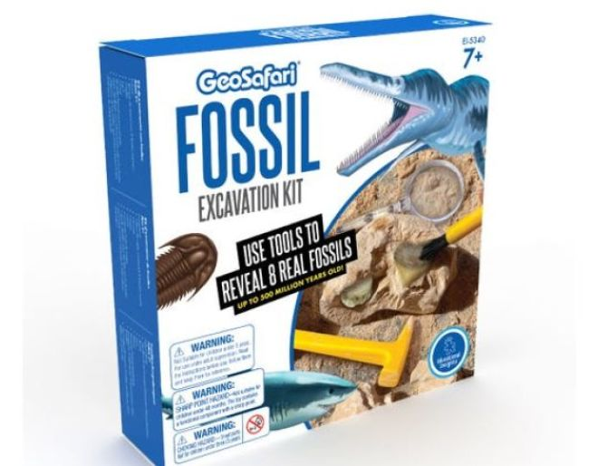 Fossil kit contents
