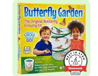 Live Butterfly Garden