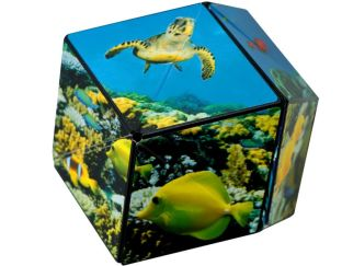 Shashibo - Undersea Shape Shifting Cube