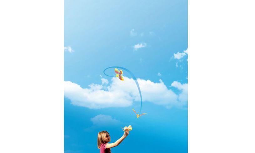 Original Flying Bird Sky