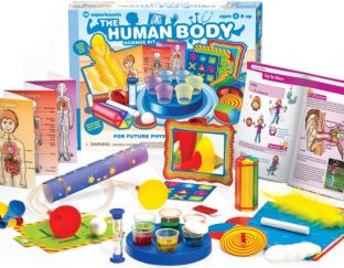 The Human Body Science Kit - Little Labs