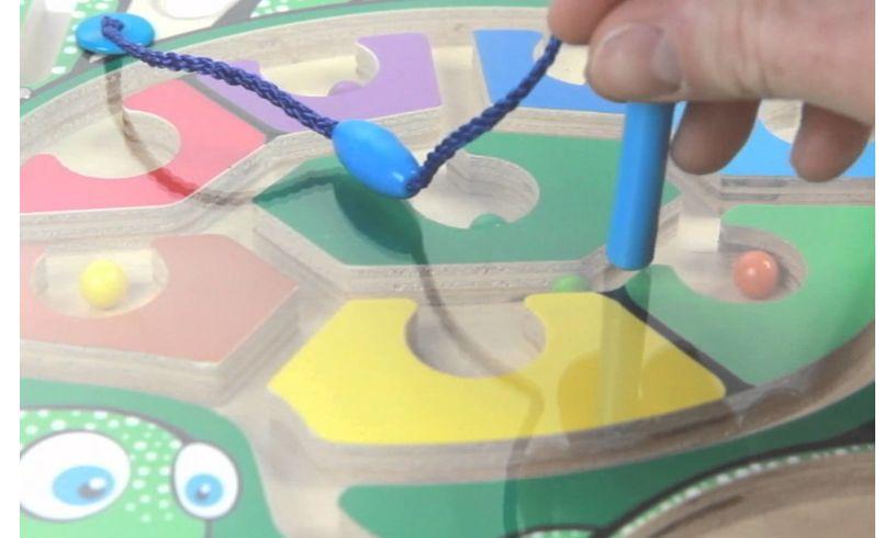 Sea Turtle Puzzle Maze Close Up